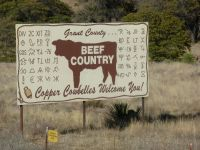 Yes, it's Cow Country