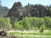 Springtime in the Gila